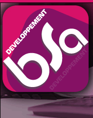 bsa informatique